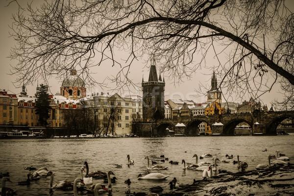 моста Прага воды природы искусства синий Сток-фото © Nejron