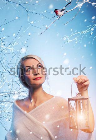 Stockfoto: Aantrekkelijke · vrouw · winter · bos · meisje · boom · gezicht