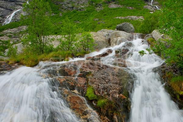 Szybko kaskada norweski góry górskich zielone Zdjęcia stock © Nejron