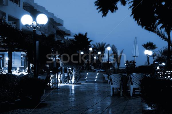 Hotel éjszaka kék virágok terv kert Stock fotó © Nejron