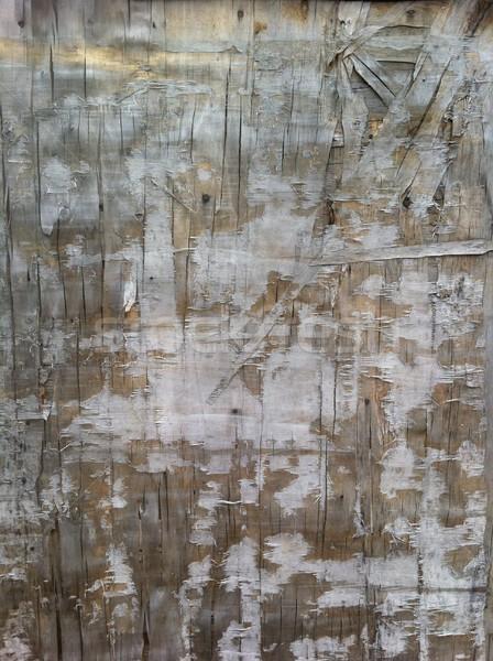 Wooden background Stock photo © Nejron