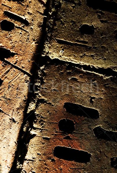 Grunge brick wall texture Stock photo © Nejron