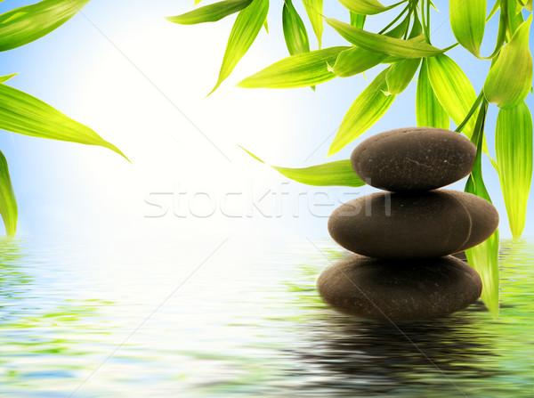 Fürdő csendélet víz keret zöld kék Stock fotó © Nejron