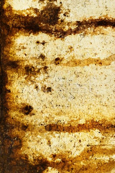 Abstract grunge texture (rust metal) Stock photo © Nejron