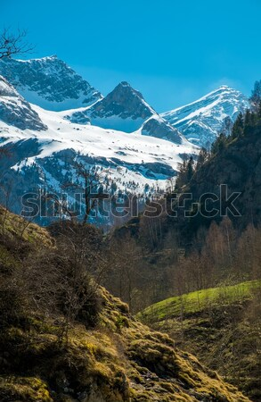 Pyrenees mountains in Cirque de Gavarnie, France Stock photo © Nejron