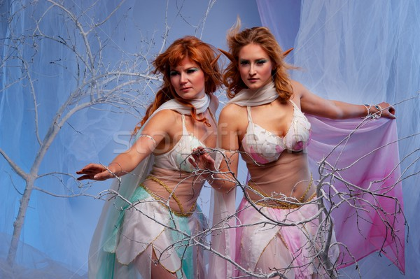 Elves in magical winter forest. Stock photo © Nejron