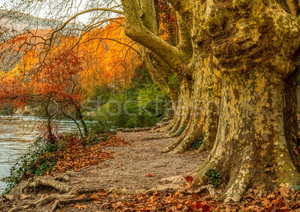 Walkway near river in Fontaine-de-Vaucluse, France Stock photo © Nejron