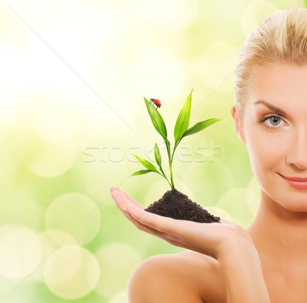 Сток-фото: красивой · женщину · молодые · завода · аннотация