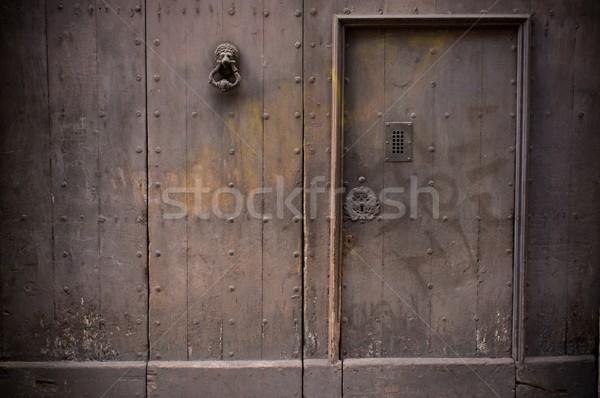 Old wooden door in fence Stock photo © Nejron
