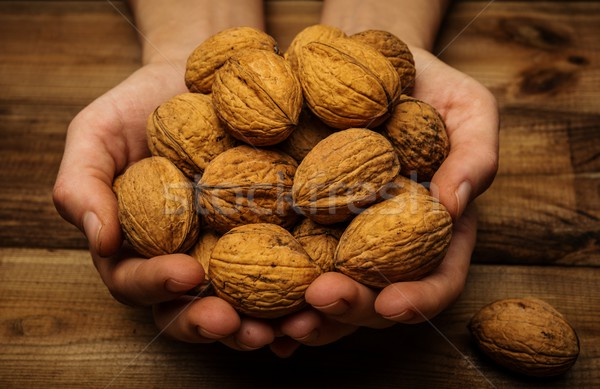 Hunan hands holding handful of walnuts over wooden table  Stock photo © Nejron