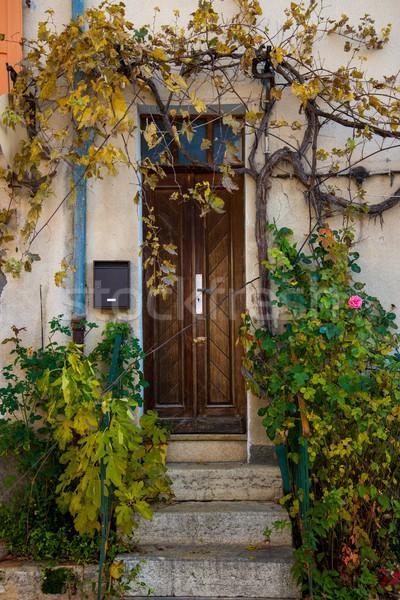 maison entr e plantes autour mur vert photo stock andrejs pidjass nejron. Black Bedroom Furniture Sets. Home Design Ideas
