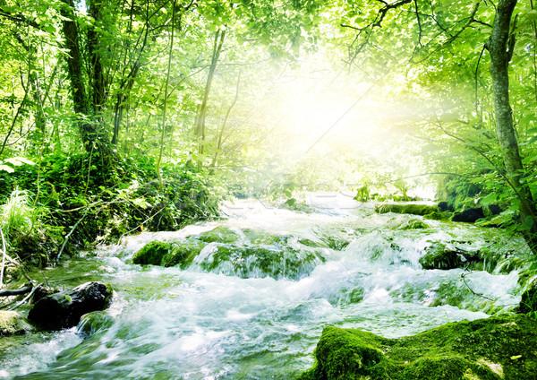 Zonneschijn bos water abstract natuur achtergrond Stockfoto © Nejron