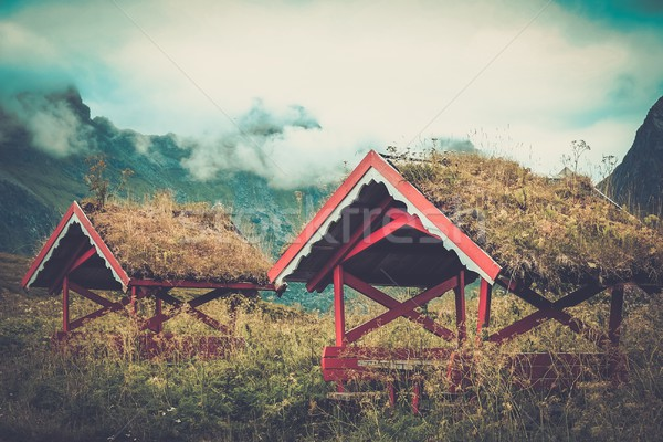 Traditional norwegian arbour standing in a lush Stock photo © Nejron