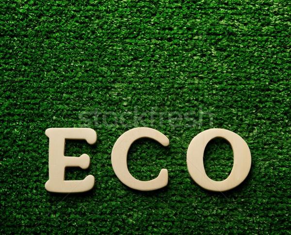 The word eco written on green background Stock photo © Nejron
