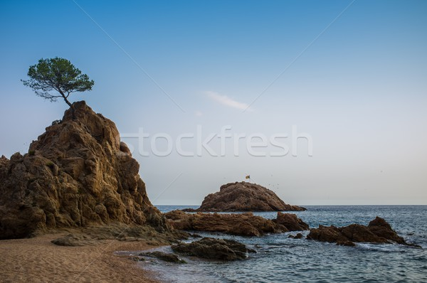 Beautiful mediterranean sea shore Stock photo © Nejron