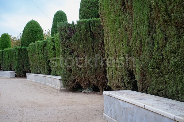 Marble bench in a park Stock photo © Nejron