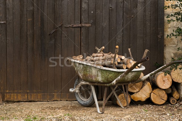 Wheelbarrow with logs standing near gate Stock photo © Nejron
