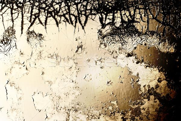 Grunge textúra textúra absztrakt festék fém fekete Stock fotó © Nejron