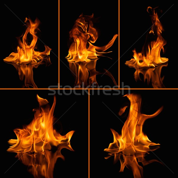 Set of fire flames on black  Stock photo © Nejron