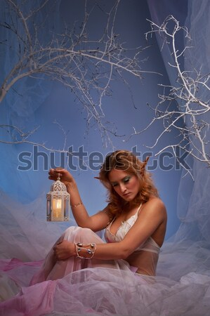 Attractive woman in winter forest Stock photo © Nejron