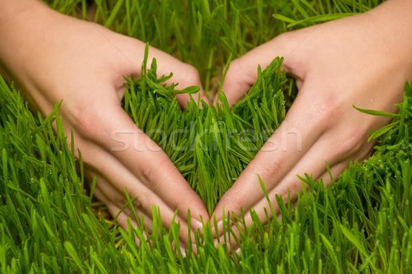 Human's hands making heart symbol on a fresh grass Stock photo © Nejron