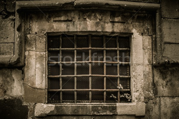 Window with lattice in old building Stock photo © Nejron