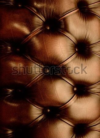 подлинный кожа текстуры моде аннотация фон Сток-фото © Nejron