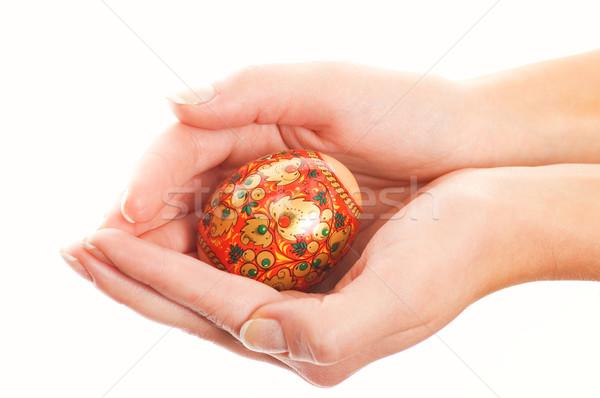 Hands holding easter egg isolated on white background Stock photo © Nejron
