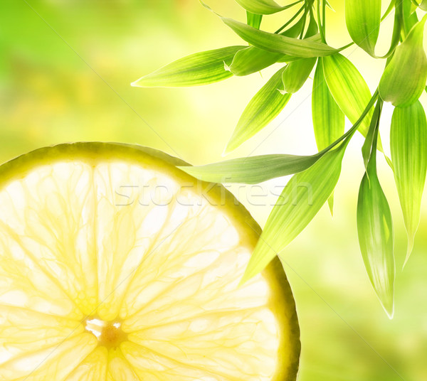 Lemon slice over abstract green background Stock photo © Nejron