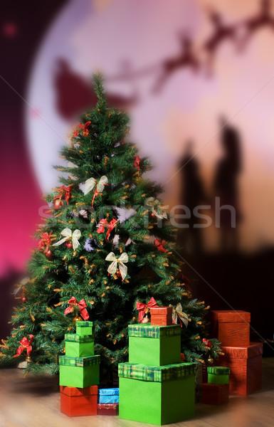 Christmas trzy około drzewo liści Zdjęcia stock © Nejron