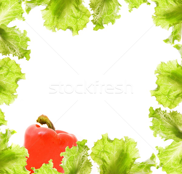 サラダ パプリカ 国境 食品 葉 庭園 ストックフォト © Nejron