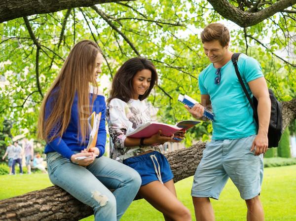 Csoport többnemzetiségű diákok város park lány Stock fotó © Nejron
