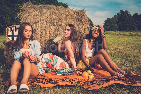 Multi-ethnic girls having picnic near stack on a field  Stock photo © Nejron