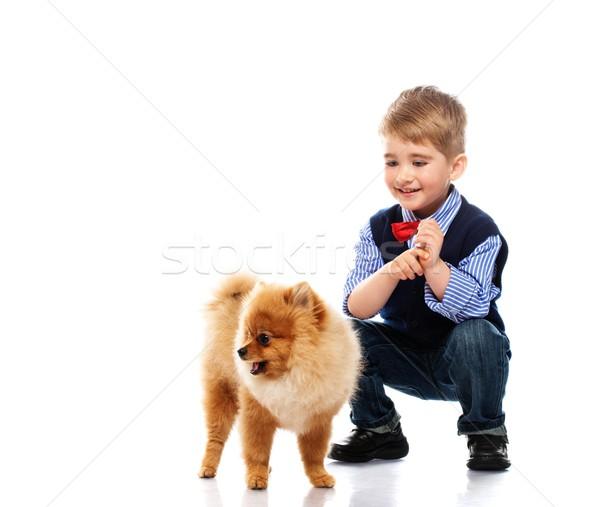 Little happy boy with spitz isolated on white background  Stock photo © Nejron