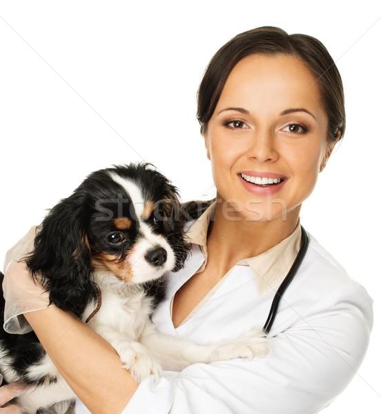 Stock fotó: Fiatal · pozitív · barna · hajú · állatorvosi · nő · lány
