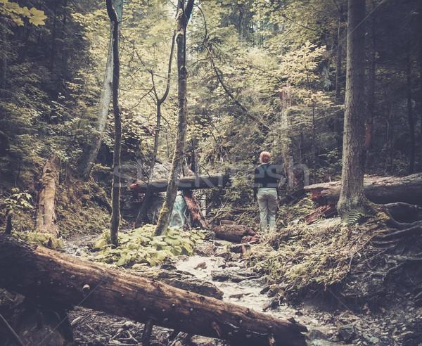 Woman hiker walking across river in a forest  Stock photo © Nejron
