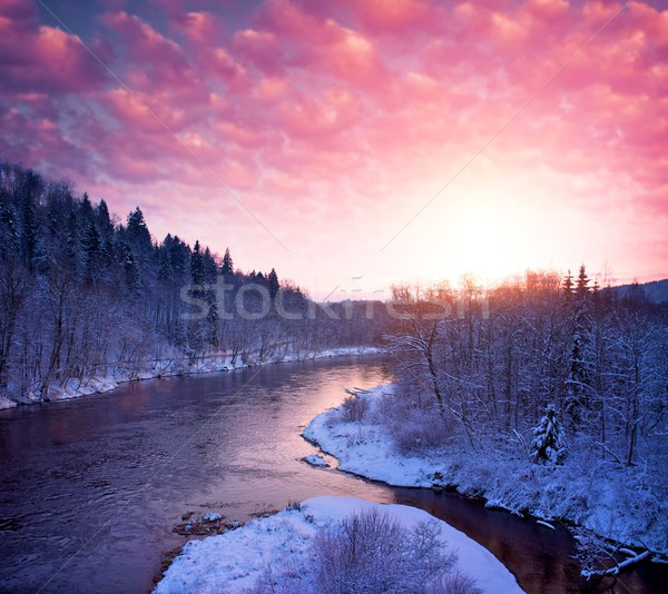 Beautiful river in  winter landscape. Stock photo © Nejron