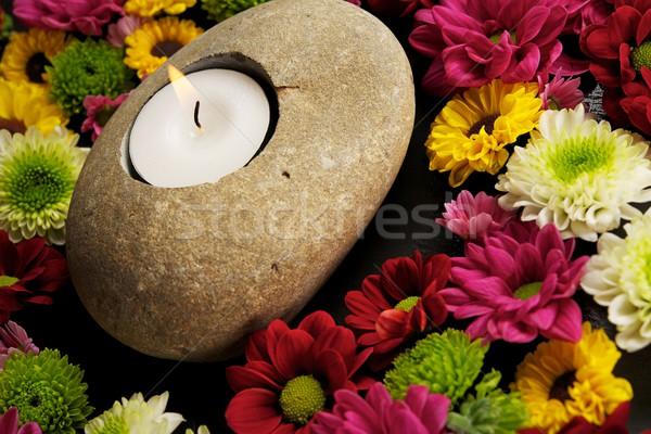 Świeca kwiaty około świetle kamień kolor Zdjęcia stock © Nejron