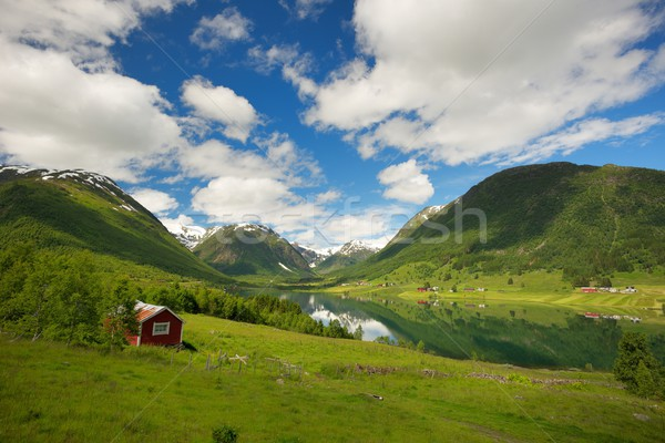 Small house in scandinavian panorama Stock photo © Nejron