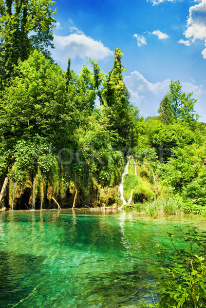 Lake in forest Stock photo © Nejron