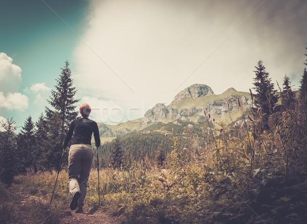 Donna escursioni piedi montagna panorama albero Foto d'archivio © Nejron