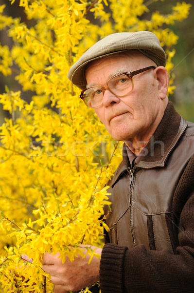 Elderly man working in garden Stock photo © Nejron