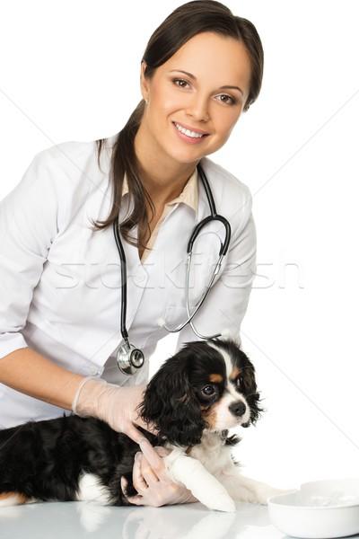 Genç pozitif esmer veteriner kadın Stok fotoğraf © Nejron