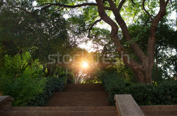 Stair in a beautiful park. Stock photo © Nejron
