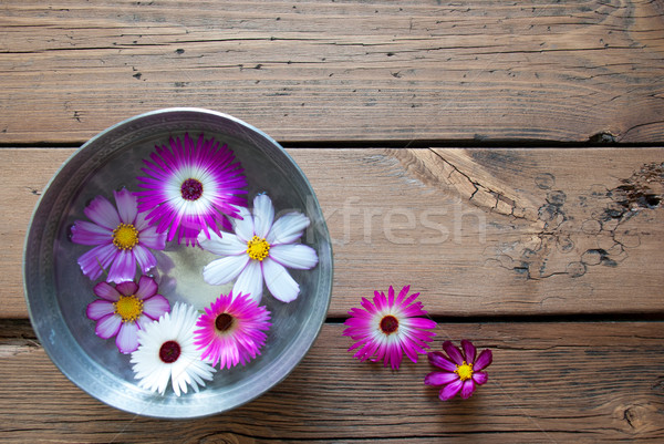 Silver Bowl With Cosmea Blossoms And Copy Space Stock photo © Nelosa