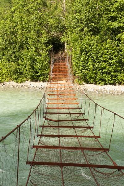 ржавые моста реке зеленый стены деревья Сток-фото © Nelosa