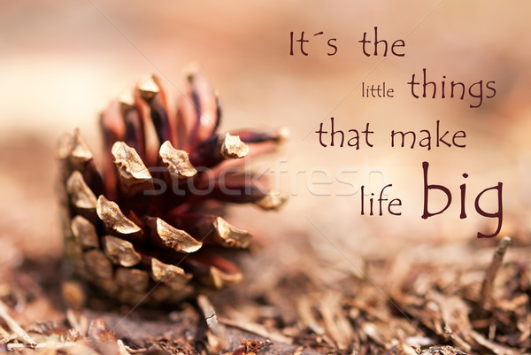 Fir Cone with Saying Its the Little Things That Make Life Big Stock photo © Nelosa