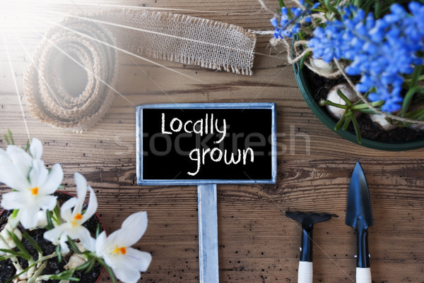 Sunny Spring Flowers, Sign, Text Locally Grown Stock photo © Nelosa