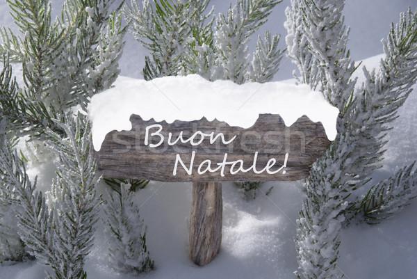 Sign Snow Fir Tree Buon Natale Means Merry Christmas Stock photo © Nelosa