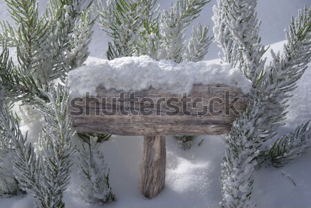 Christmas Sign With Copy Space Snow Fir Tree Branch Stock photo © Nelosa